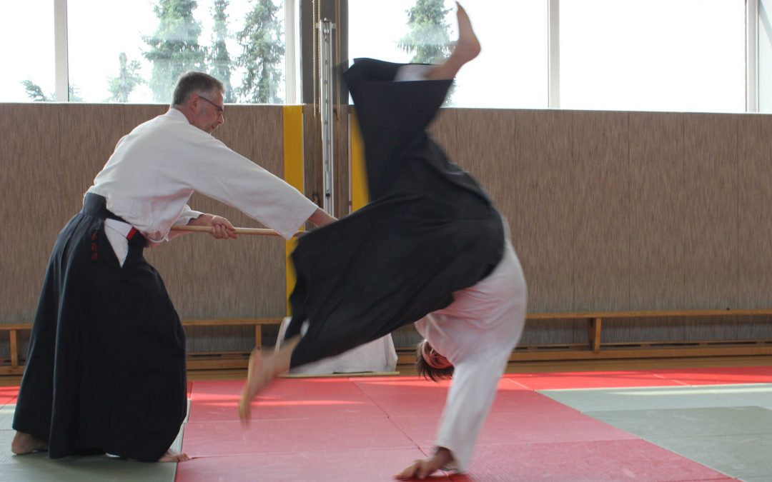 Traditioneller Aikidolehrgang