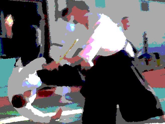 Einladung zum Aikido-Dan-Lehrgang auf Landesebene